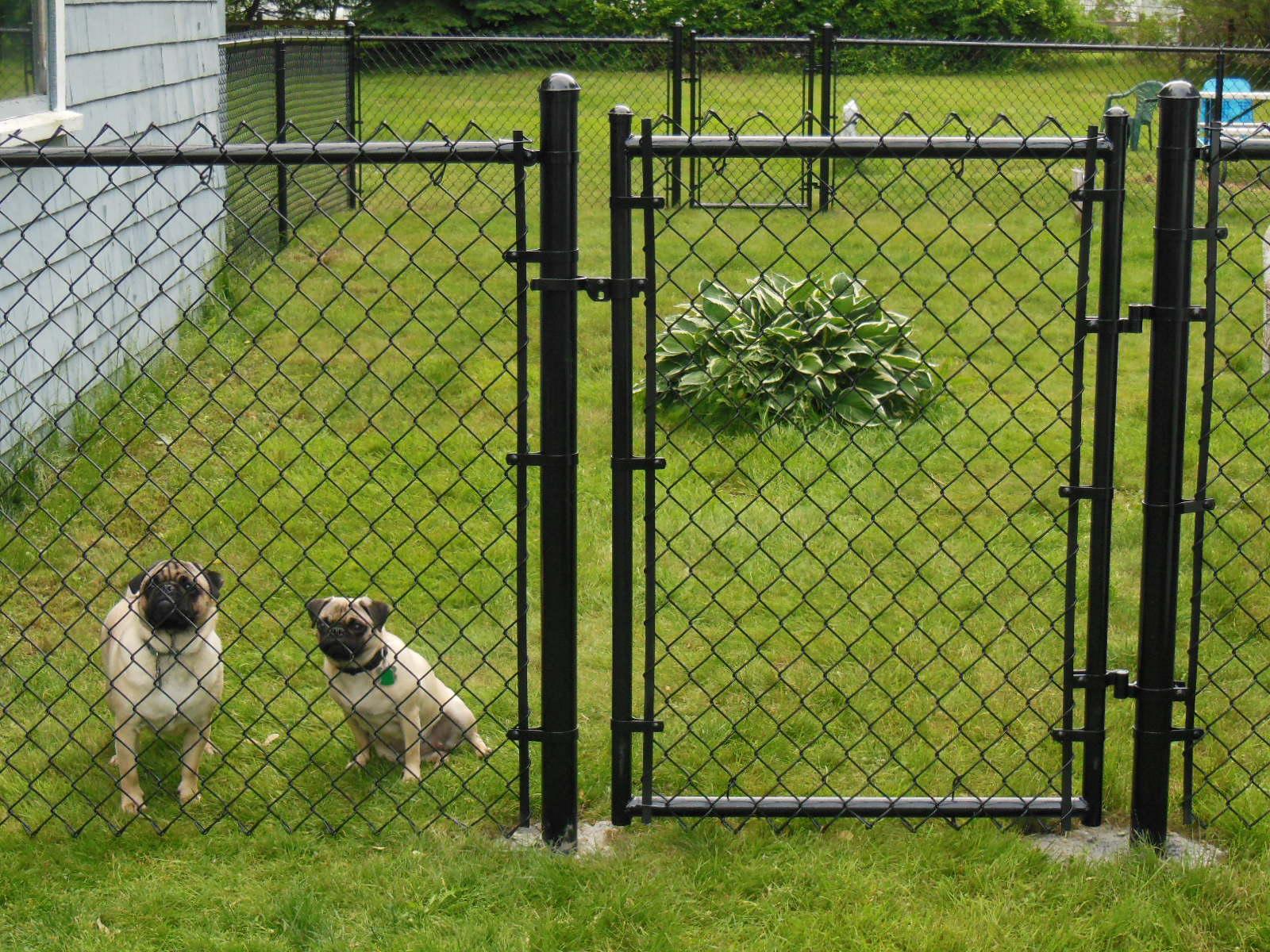 Ограждения для собак