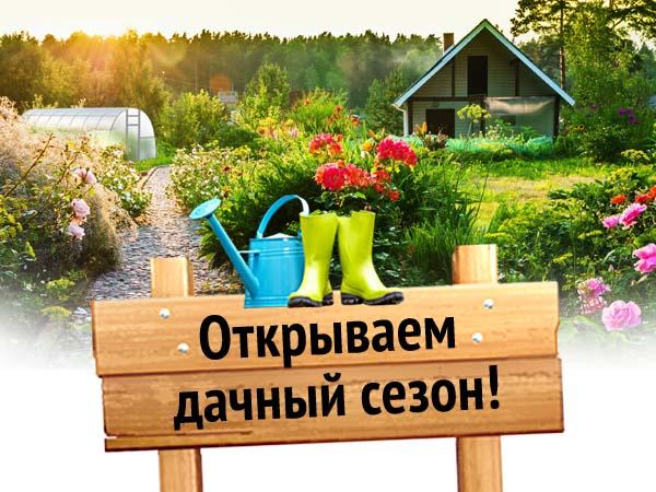 dachnyj-sezon